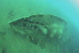 Royal Oak wreck